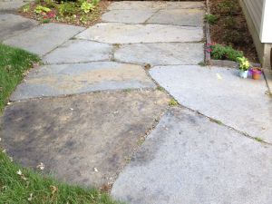 Flagstone Walkway Collaboration with Jared Flynn
